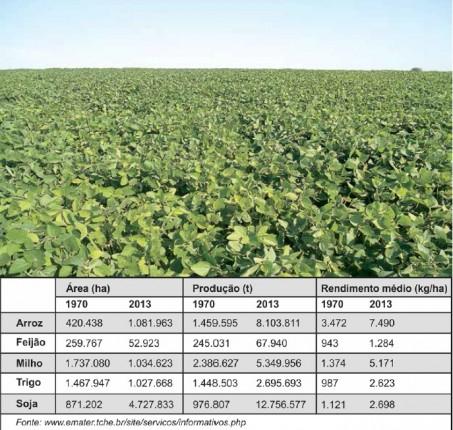 Embalada pelos bons preços do mercado internacional, a soja avança a passos largos no RS