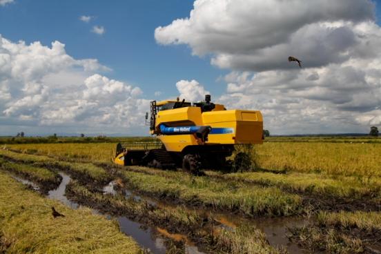Produção agroecológica