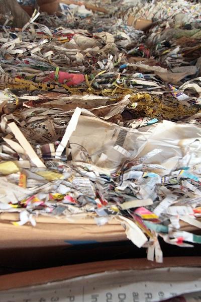 Trinta itens são separados para reciclagem, entre eles papelão marrom, caixas de leite, papel branco, papel, misto, revista, jornal, PET, latinha de alumínio e cobre.