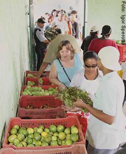 Programa beneficia centenas de famílias da Região Metropolitana da capital