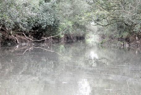 Obras em andamento devem aumentar de 5%para 20%o esgoto tratado no rio do Sinos, informa Arno Kayser