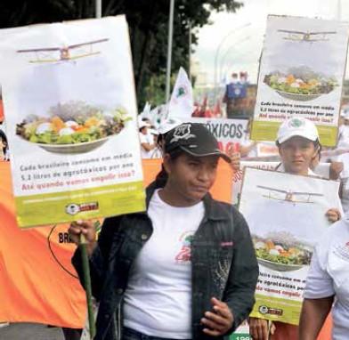 Agrotóxicos e câncer: o alerta do Inca