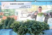 Getúlio vende em média 70 caixas de hortaliças produzidas na sua lavoura em Eldorado do Sul | Foto: Igor Sperotto