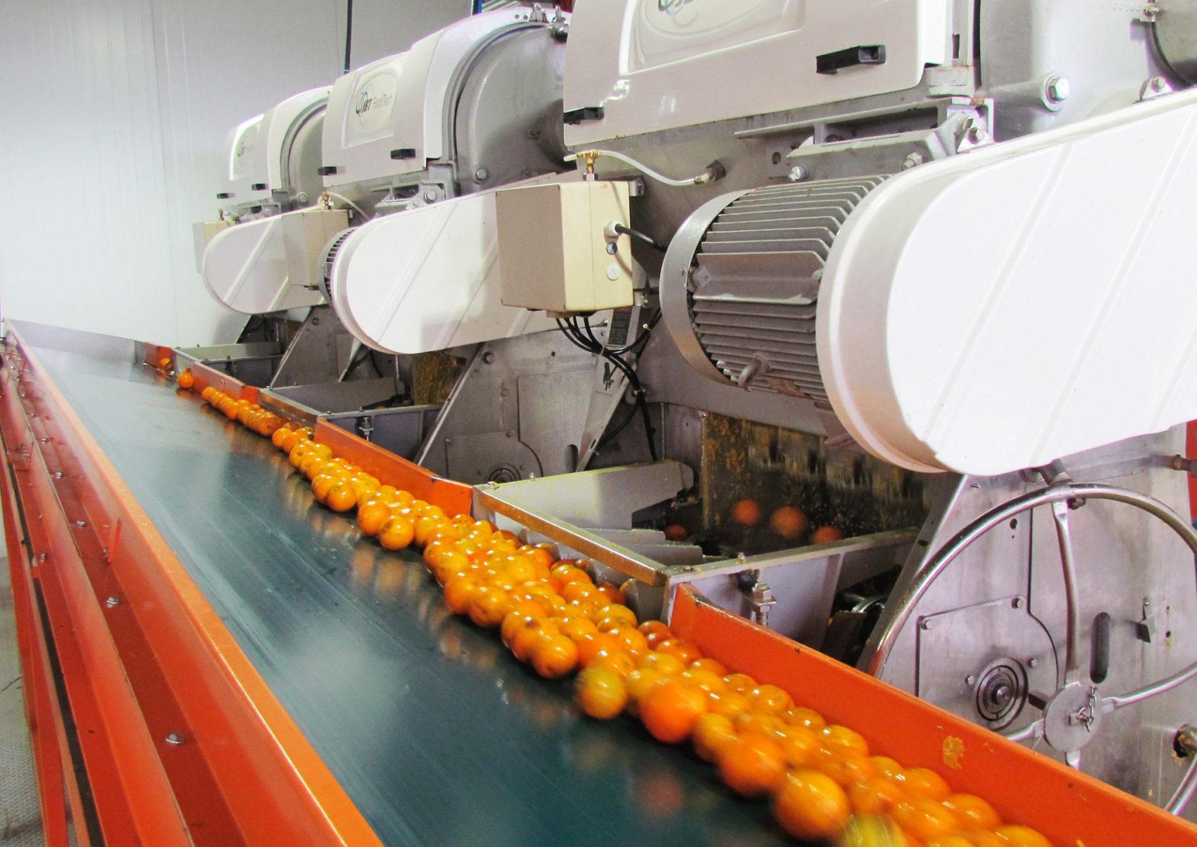 Agroindústria exporta sucos