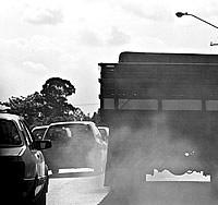 O Brasil já possui tecnologia para substituir o Diesel por óleos de origem vegetal não-poluentes