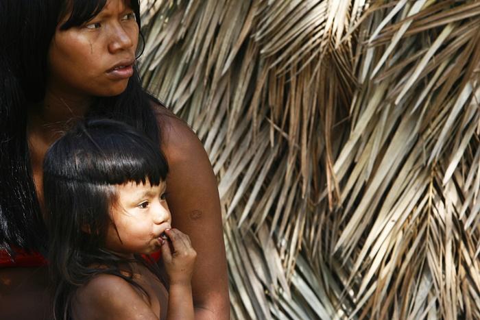 População indígena é vista como obstáculo por exploradores da floresta