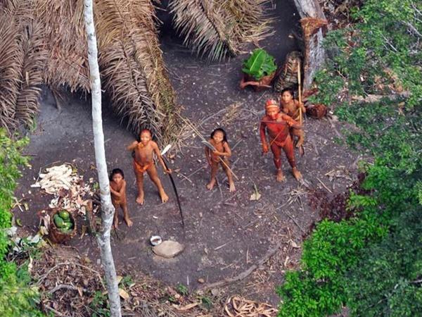 Etnias isoladas que vivem no baixo e médio Javari sofrem cerco e garimpeiros e agricultores e a iminência de massacres