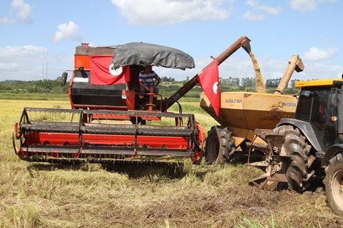 Os assentamentos do MST produziram 27 mil toneladas de arroz orgânico, a maior safra da sua história; além de 120 milhões de litros de leite. Mas esse modelo está ameaçado por cortes de até 99,8% do orçamento da agricultura familiar
