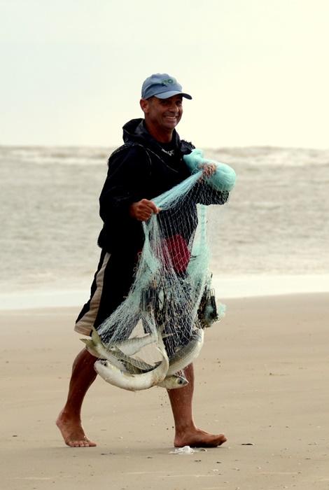 Pescadores artesanais de tainha contam com a interação dos botos