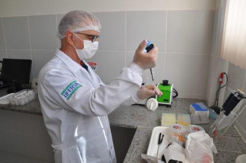 A tese defendida por Dayson verificou as concentrações dos agrotóxicos em abelhas africanizadas mortas com suspeita de envenenamento