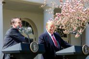 Bolsonaro e Trump durante coletiva no Rose Garden da Casa Branca, em Washington | Foto: Isac Nóbrega/ PR/ Divulgação