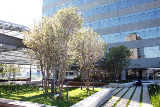 Edificio Odebrecht em São Paulo | Foto: Acervo Odebrecht