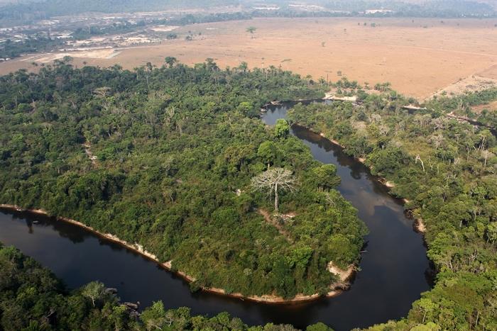 Área desmatada da floresta amazônica próxima à reserva indígena Baú, do povo Kayapó, no Pará