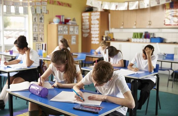 """""""Critica-se a Educação Diferenciada por estar modernizando o discurso da segregação, ancorada na neurociência e fortalecida com o crescimento do conservadorismo em relação aos valores"""""""