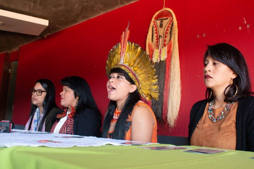 Junto com Sônia Guajajara (MA), Cristiane Julião Pankararu (PE) e Célia Xakriabá (MG), a representante da região Sul, Nyg Kiutá Kaingang, da Terra Indígena Apucaraninha (PR), compôs a mesa da coletiva à imprensa.