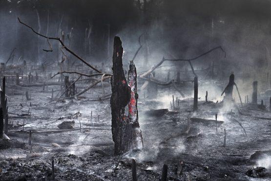 Desmonte das políticas ambientais e o dia do fogo | Foto: Araquém Alcântara