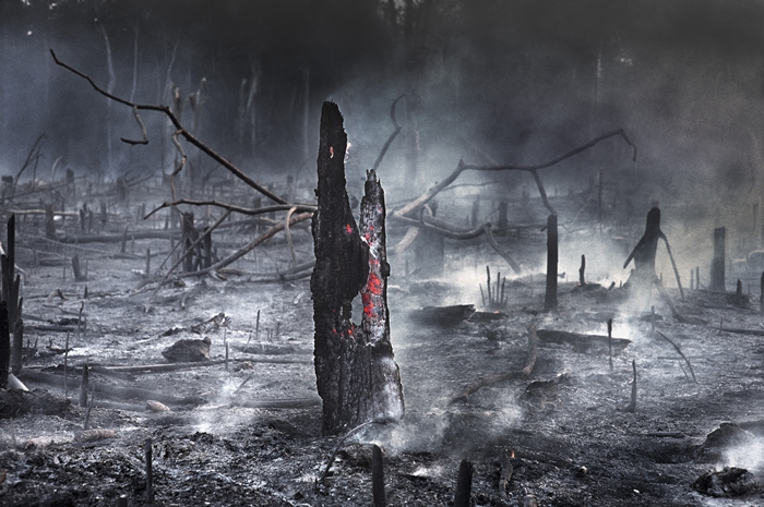 Dados do ISA mostraram 2.548 pontos de incêndio, a maioria junto à BR 163, que concentrada a produção agropecuária da região