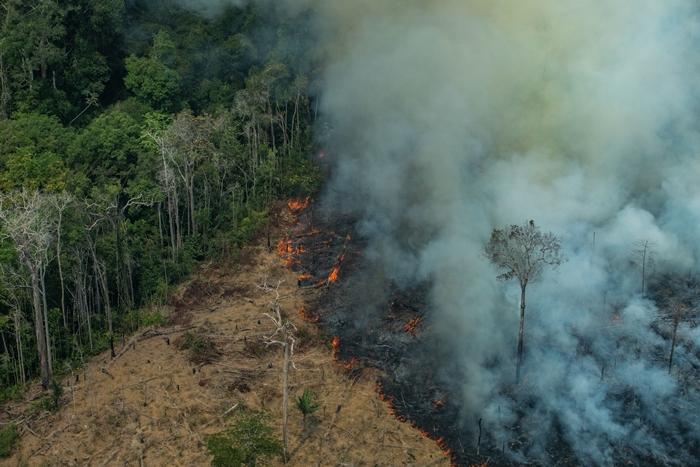 Área queimada em Candeiras do Jamari, Rondônia