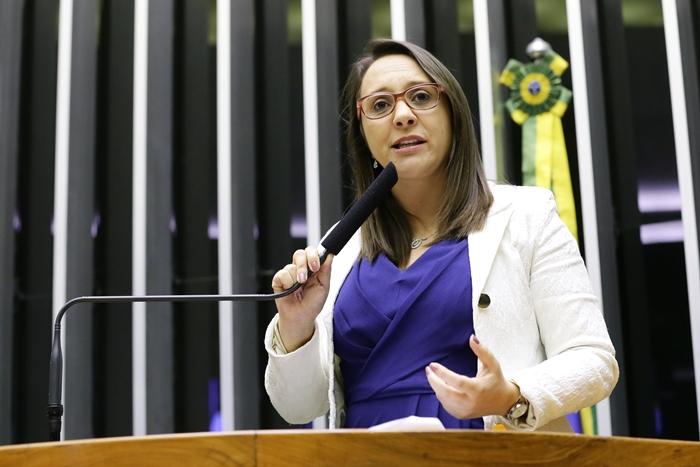 Renata Abreu (Podemos-SP), autora da proposta, destacou enfrentamento à violência