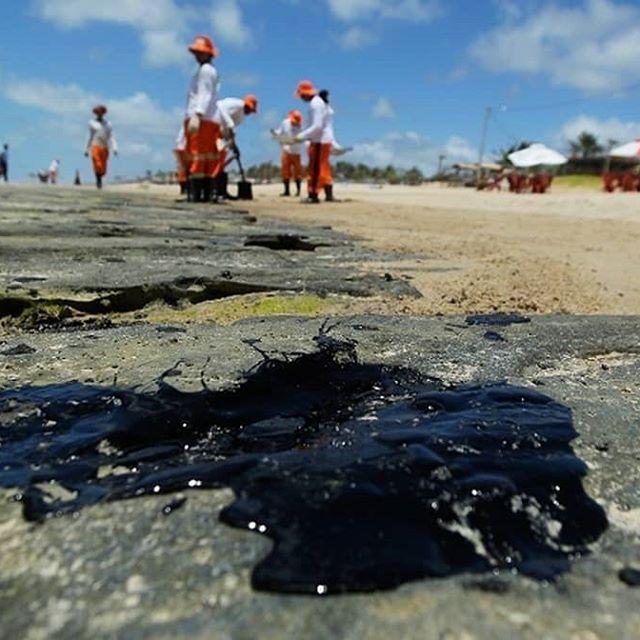 Ações para conter avanço do petróleo sobre as praias foram retardadas em mais de um mês por omissão do governo