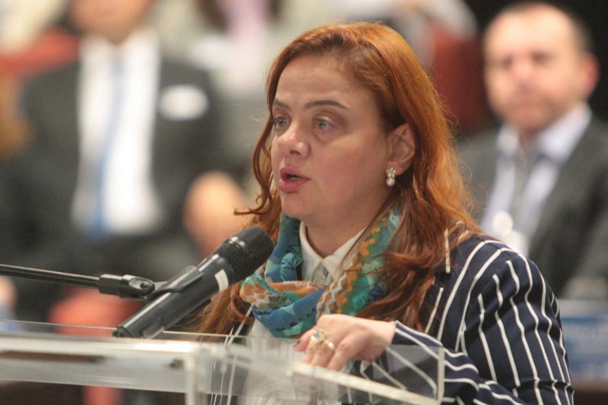Adriana Abreu Magalhães Dias está preparando um livro abordando grupos neonazistas brasileiros