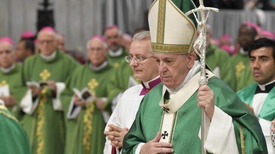Papa Francisco pede comprometimento dos católicos com a Amazônia | Foto: Vatican News/ Divulgação