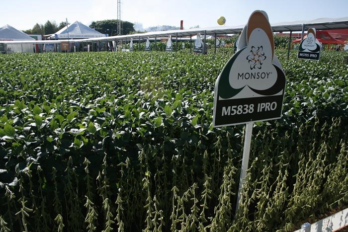 Uma das irregularidades envolve o Programa Monsoy Multiplica utilizado pela Monsoy, empresa obtentora que atua no desenvolvimento de novas variedades de semente de soja, para conceder descontos sobre royalties de cultivar que lhe seriam devidos por multiplicadores de sementes de soja