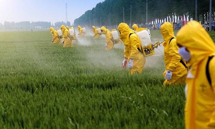 Multinacionais do Grupo Bayer, que atua com OGMs e agrotóxicos, são investigadas por diversas irregularidadades e condutas anticompetitivas
