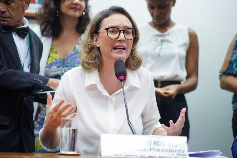 """Para Maria do Rosário, a abordagem anunciada pela palestrante """"reforça o estigma, a incompreensão e a violência contra crianças e famílias que já vivem esses processos com muito sofrimento, diante de agressões"""""""