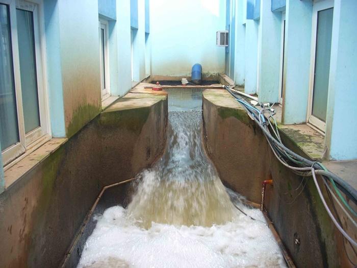 Entrada de água bruta na Estação de Tratamento da Comusa, em Novo Hamburgo