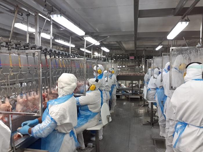 Distanciamento nas linhas de produção é uma das reivindicações dos trabalhadores da alimentação