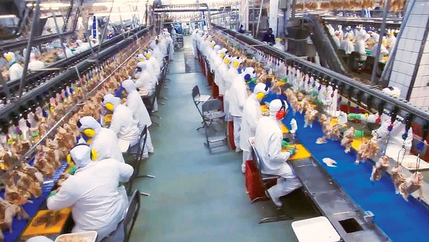 Linha de produção da BRF: em 2018, a multinacional fechou três plantas no RS e demitiu 5,6 mil trabalhadores