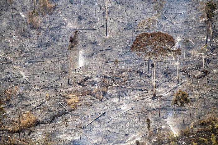 Após o incêndio de 2018, houve aceleração do desmatamento na Amazônia e o início da época dos incêndios florestais é marcado pelo acirramento dos conflitos envolvendo invasões de terras e a intensificação da violência contra os agentes dos órgãos ambientais