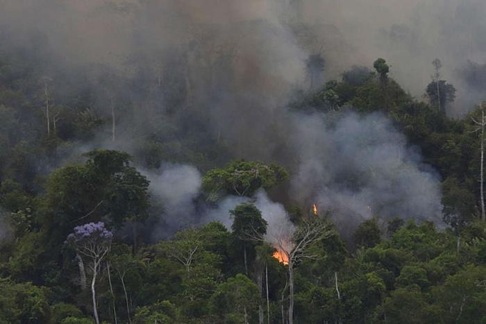 Sobrevoo de monitoramento de queimadas e desmatamento na Amazônia, em setembro de 2019, sobre as regiões do leste do Amazonas, norte do Mato Grosso e oeste do Pará