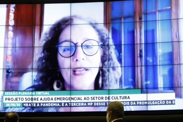 Jandira Feghali (PCdoB), relatora do projeto encaminhado pela deputada Benedita de Silva (PT/RS) destacou que a proposição trouxe as fontes de financiamento para a ajuda ao setor: orçamento e superávit do Fundo Nacional de Cultura.