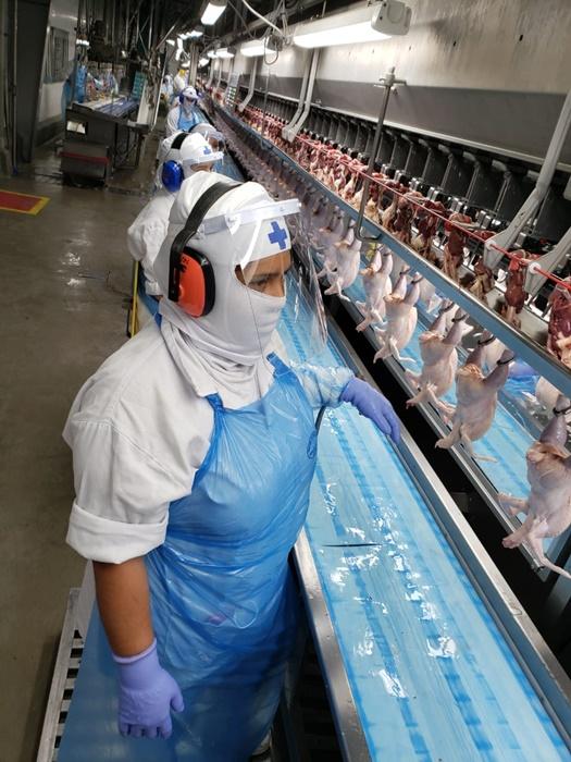 Empresa afirma que adotou medidas de prevenção para garantir a segurança dos trabalhadores e que pretende reabrir no dia 7