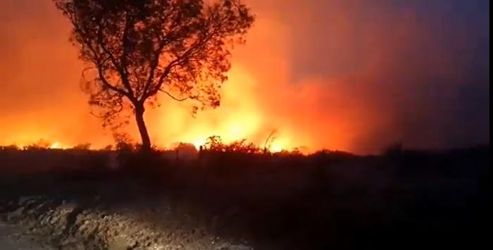 O mês de julho bateu recorde de queimadas em todo o país, com 20,6 mil quilômetros quadrados, 60% a mais do que em junho e 9% em relação ao ano passado