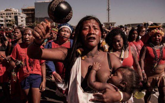 STF obriga governo a proteger indígenas durante pandemia | Foto: Apib/Reprodução