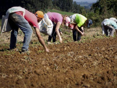 Trabalhadores rurais protestam contra as negativas do INSS em conceder auxílio-doença e aposentadorias | Foto: Pedro Ribas/ANPr/Divulgação