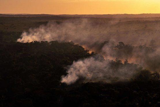 Queimadas impactam saúde na Amazônia | Foto: Christian Braga/ Greenpeace