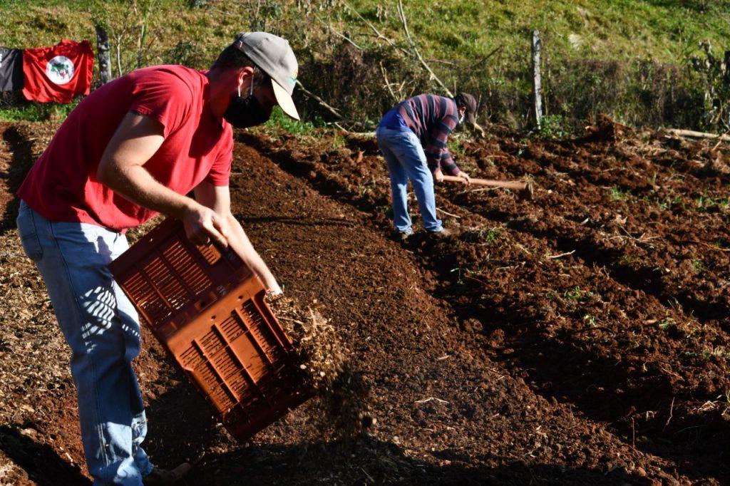 Horta comunitária no Assentamento João de Paula(PR), no município de Renascença, onde foram plantadas aproximadamente 2.600 mudas de hortaliças para doação nas ações de solidariedade que acontecem na região desde o início da pandemia de coronavirus. Iniciativas como essa são realizadas em todo o país