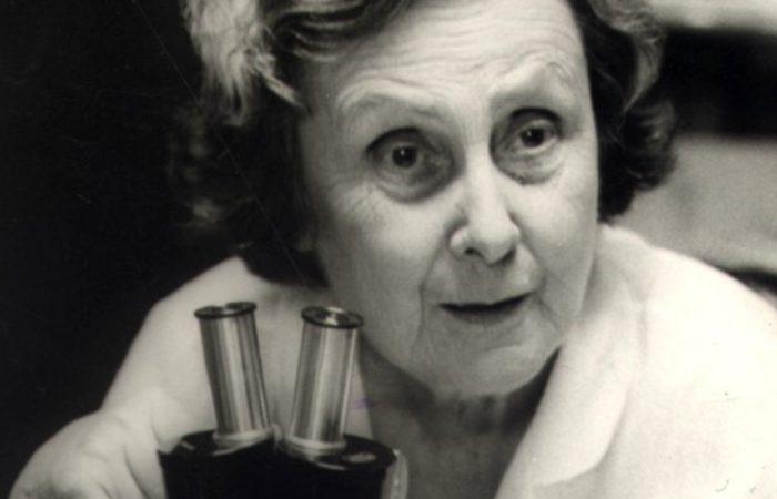 A pioneira Bertha Lutz, eleita suplente para a Câmara dos Deputados, legislou por um ano até a dissolução do Congresso pelo Estado Novo