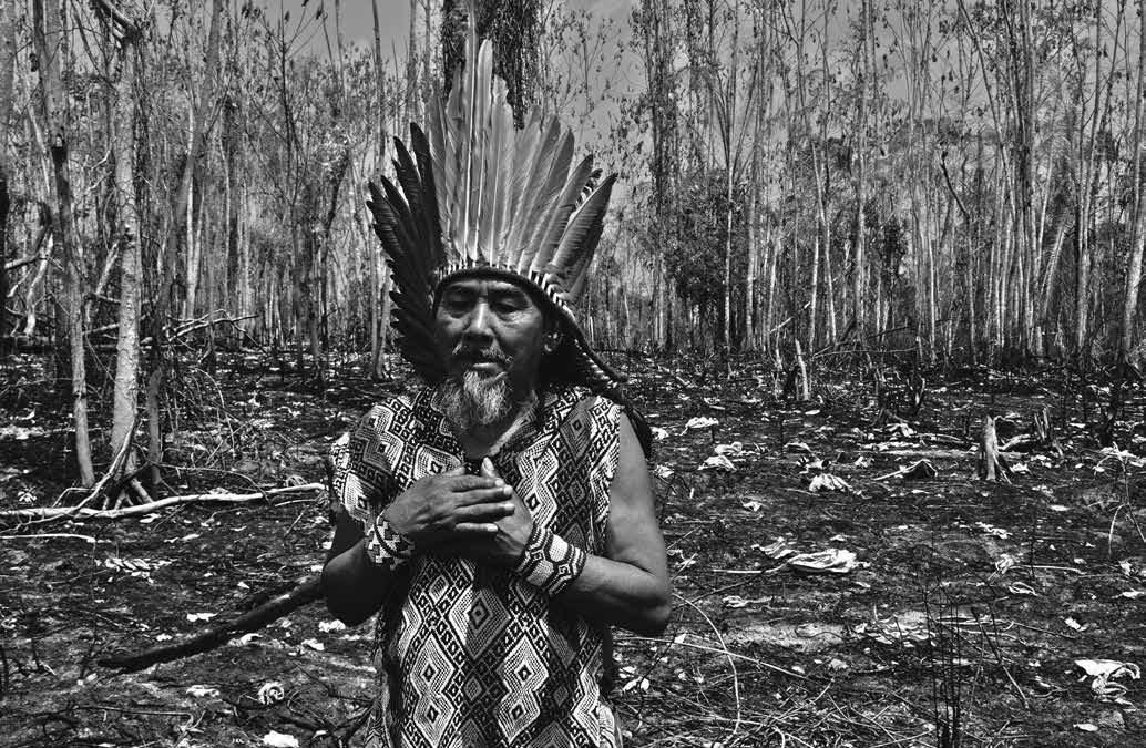 Invasão de terras indígenas mais do que dobrou no Brasil de Bolsonaro (3)
