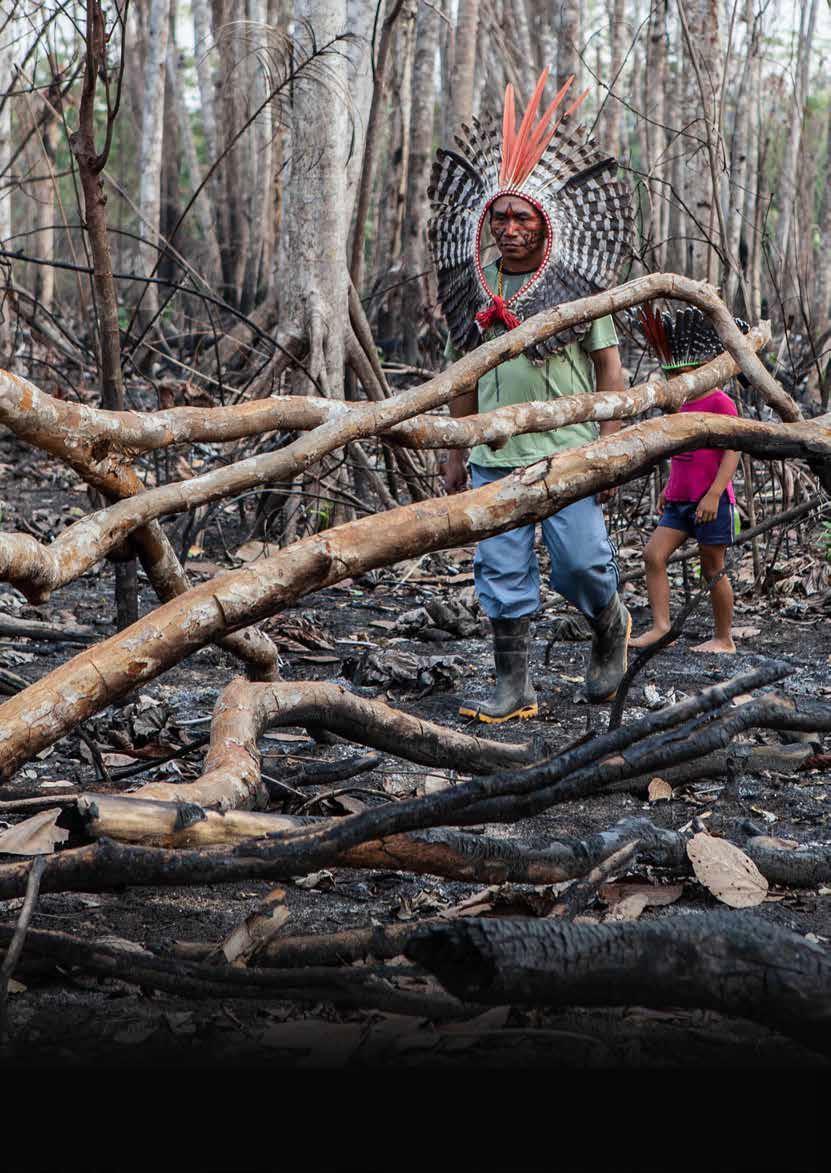 Em agosto de 2019, fazendeiros que ocupam parte da Terra Indígena Valparaíso, reivindicada há 29 anos pelo povo Apurinã, queimaram 600 dos cerca de 27 mil hectares do território localizado no município de Boca do Acre, no sul do Amazonas. Dentre outras severas perdas, a queimada destruiu um castanhal utilizado pelos indígenas como fonte de subsistência