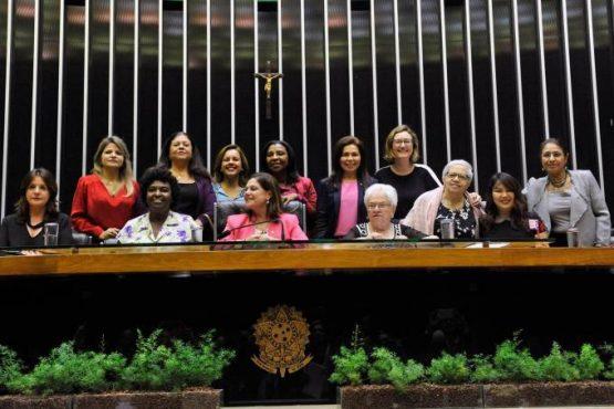 Observatório propõe medidas para combater violência de gênero na política | Foto: Luis Macedo/ Agência Câmara