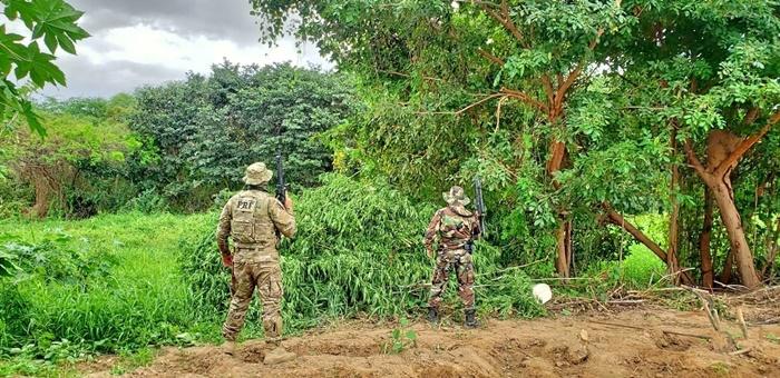Operação da Polícia Rodoviária Federal no sertão de Pernambuco, onde estão localizadas terras do estado arroladas no processo
