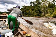Sem recursos para fazer a coleta e sem apoio para comercializar, os extrativistas ficam muito vulneráveis, aponta o ex-secretário de extrativismo do Ministério do Meio Ambiente, Paulo Cabral