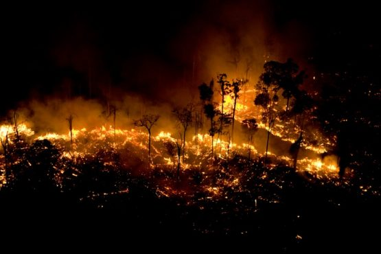 Sinpro/RS Debate: queimadas e mineração | Foto: Greenpeace/ Divulgação