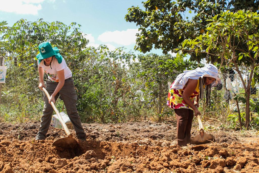 Famílias do MST no Vale do Rio Doce recebem curso de formação em agrofloresta, que usa tecnologia para o reflorestamento