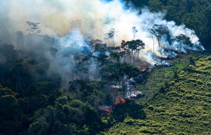 Segundo dados do Inpe, destruição da Amazônia aumentou 34% em 2020, o que representa a perda de mais de 10 mil km² de floresta